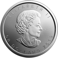 2019 1 oz. Canadian Platinum Maple Leaf (BU)